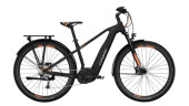 E-Bike Conway Cairon C 229 SE schwarz,orange