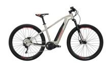 E-Bike Conway Cairon S 329 rot,grau