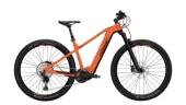 E-Bike Conway Cairon S 829 schwarz,orange