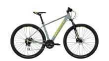 Mountainbike Conway MS 429 gelb,grau