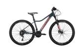 Mountainbike Conway ML 5 rot,grau