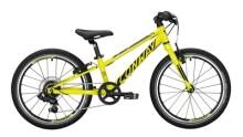 Kinder / Jugend Conway MS 200 schwarz,gelb