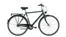 Citybike Excelsior Touring ND grün