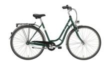 Citybike Excelsior Touring Niro ND grün