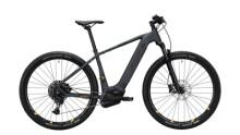 E-Bike KAYZA SAPRIC 12_i grau