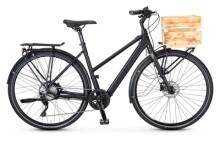E-Bike Rabeneick TC-E C Deore XT 10-Gang / Bafang / 252Wh / Disc