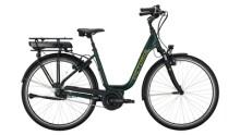 E-Bike Victoria eTrekking 5.10 grün,grau