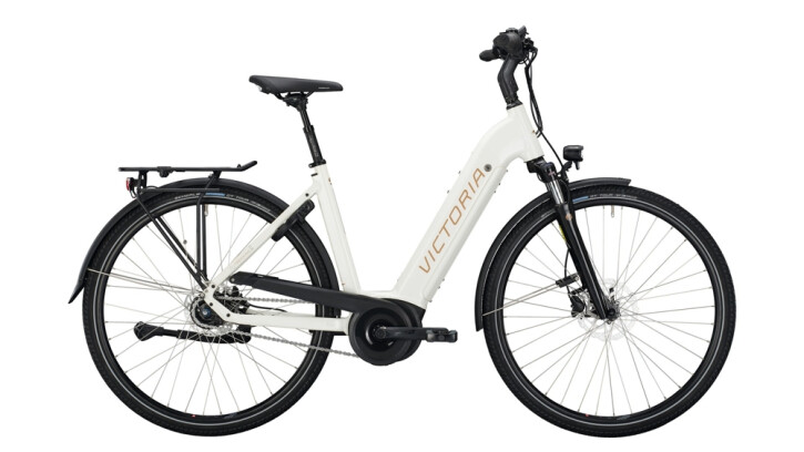 E-Bike Victoria eTrekking 11.4 silber,weiß 2020