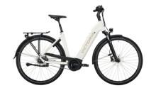 E-Bike Victoria eTrekking 11.6 silber,weiß