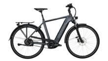 E-Bike Victoria eTrekking 11.9 silber,grau