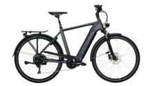 E-Bike Victoria eTrekking 12.9 silber,grau