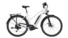 E-Bike Victoria eTrekking 10.9 silber,weiß