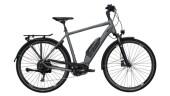 E-Bike Victoria eTouring 6.3 weiß,grau