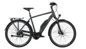 E-Bike Victoria eTouring 7.4 silber,grau