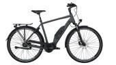 E-Bike Victoria eTouring 7.5 silber,grau