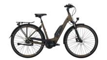 E-Bike Victoria eTouring 7.6 schwarz,braun