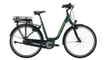 E-Bike Victoria eTrekking 5.9 H grün,grau
