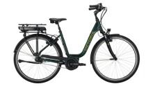 E-Bike Victoria eTrekking 5.9 grün,grau