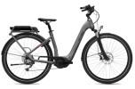 E-Bike FLYER Gotour2 5.01R Silver Dark Cool Gloss