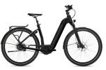 E-Bike FLYER Gotour6 5.01R Black Matt