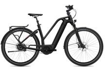 E-Bike FLYER Gotour6 5.10 Black Matt