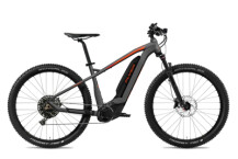 E-Bike FLYER Uproc2 4.50 Anthracite / Magma Red Matt