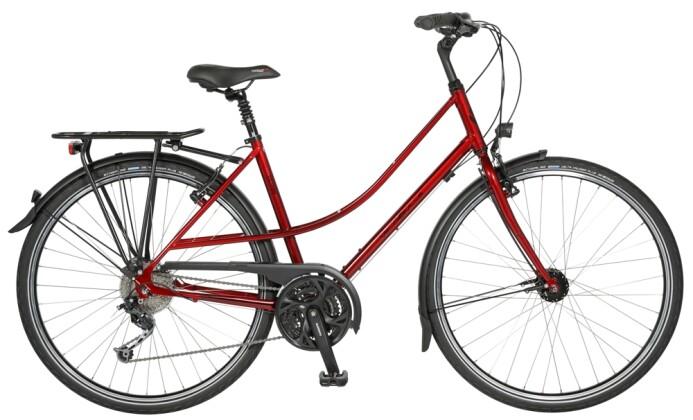 Trekkingbike Velo de Ville A250 CrMo 8 Gang Shimano Nexus Freilauf 2020