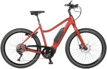 E-Bike Velo de Ville AES 800 9 Gang Shimano Deore
