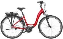E-Bike Riese und Müller Swing2 city rücktritt