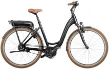 E-Bike Riese und Müller Swing3 vario urban
