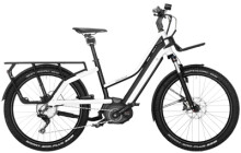 E-Bike Riese und Müller Multicharger Mixte GT touring