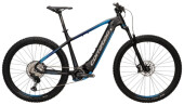 E-Bike Corratec E-Power X Vert Pro Team