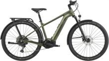 E-Bike Cannondale Tesoro Neo X 1