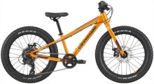 Kinder / Jugend Cannondale Kids Cujo 20+