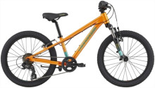 Kinder / Jugend Cannondale Kids Trail 20""
