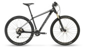 Mountainbike Stevens Applebee 29""