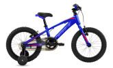 "Kinder / Jugend BH Bikes EXPERT JUNIOR 16"""