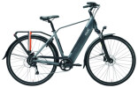 E-Bike QWIC RD9 Stone Grey Diamond