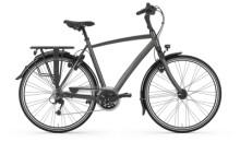 Trekkingbike Gazelle CHAMONIX titanium grey H
