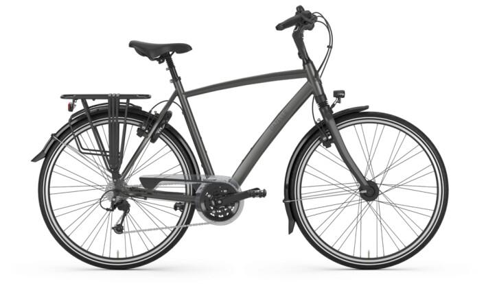 Trekkingbike Gazelle CHAMONIX titanium grey H 2020