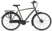 Citybike Gazelle CHAMONIX C8
