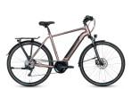 E-Bike Grecos Eli 2.6