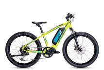 E-Bike Grecos Wild-E 24