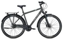Citybike FALTER C 4.0 PLUS Diamant titanium