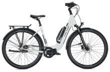 e-Citybike FALTER E 8.2 RT 500 Wave white-grey