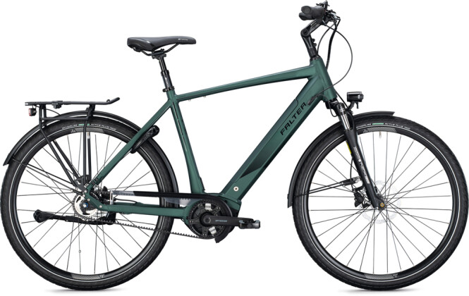 e-Citybike FALTER E 9.8 RT Diamant dark green 2021