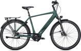 e-Citybike FALTER E 9.8 FL Diamant dark green