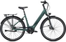 e-Citybike FALTER E 9.8 FL Wave dark green