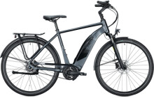 e-Citybike FALTER E 9.3 RT Diamant dark anthracite