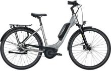 e-Citybike FALTER E 9.0 FL 500 Wave titanium